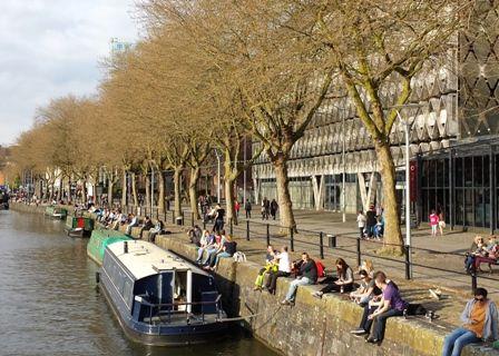 narrow-quay-trees