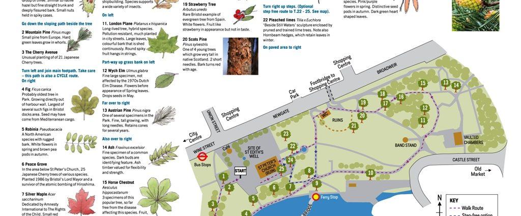 Castle Park Tree Trail
